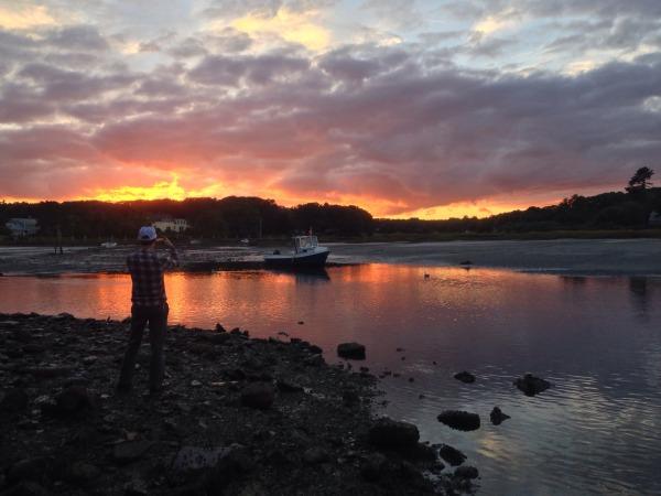 Beautiful sunset in this estuarine envrionment